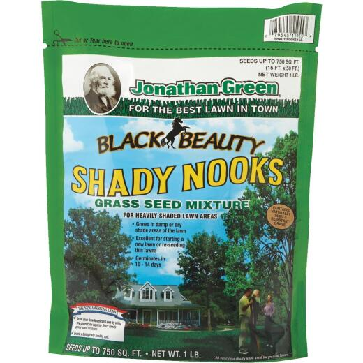Jonathan Green Black Beauty 1 Lb. 375 Sq. Ft. Coverage Trivialis, Fescue, Ryegrass Grass Seed